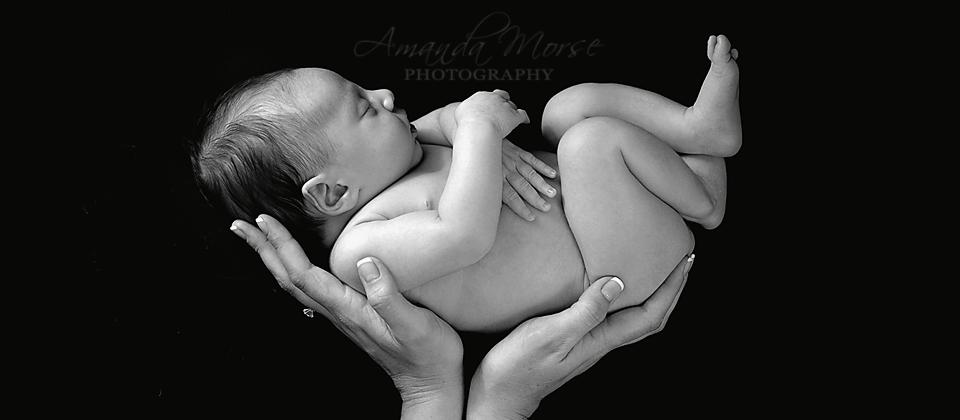 Amanda Morse Photography